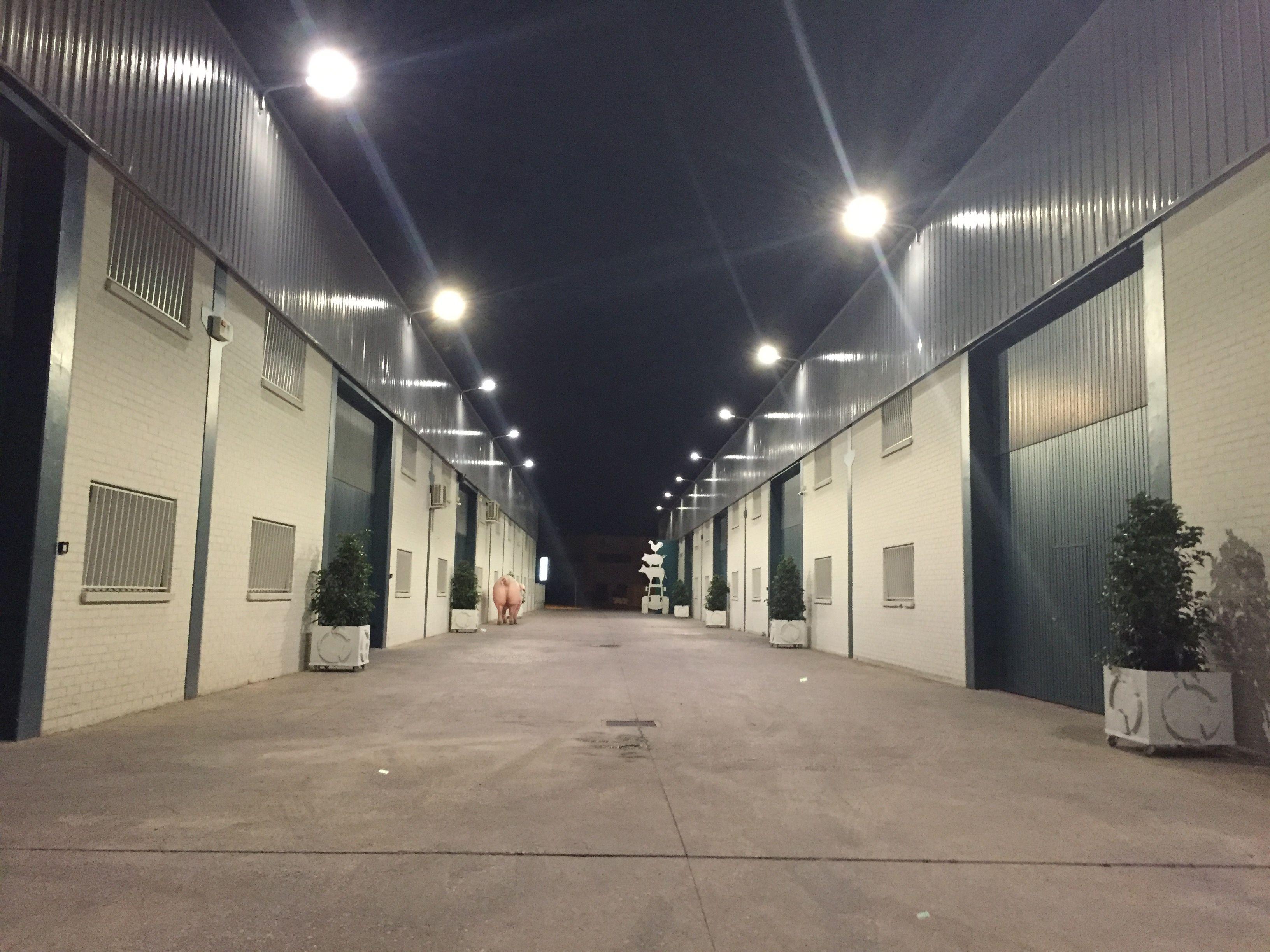 Inaugurada la iluminaci n exterior de agropal agropal - Iluminacion exterior ...