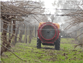 La importancia del cobre en los cultivos leñosos